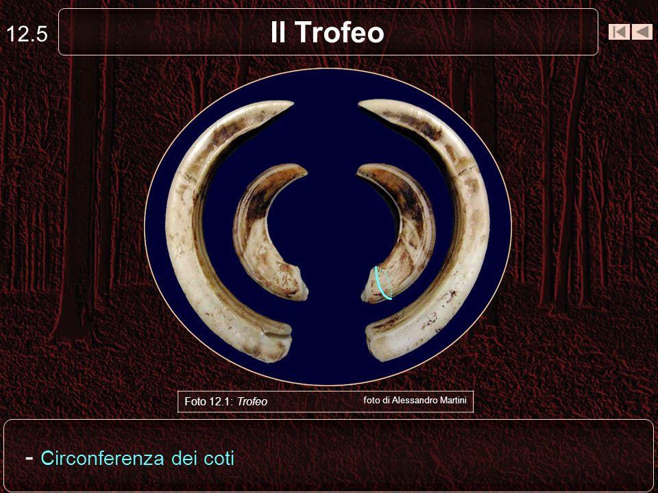 Il Trofeo 12.5 Foto 12.1: Trofeo foto di Alessandro Martini - Circonferenza dei coti