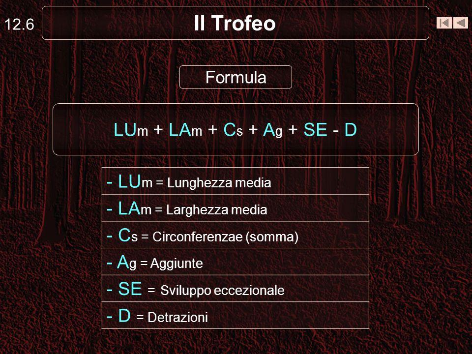 Il Trofeo 12.6 Formula LU m + LA m + C s + A g + SE - D - LU m = Lunghezza media - LA m = Larghezza media - C s = Circonferenzae (somma) - A g = Aggiunte - SE = Sviluppo eccezionale - D = Detrazioni