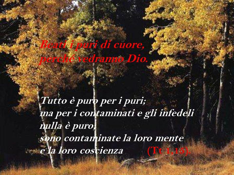 Beati i puri di cuore, perché vedranno Dio. Tutto è puro per i puri; ma per i contaminati e gli infedeli nulla è puro; sono contaminate la loro mente