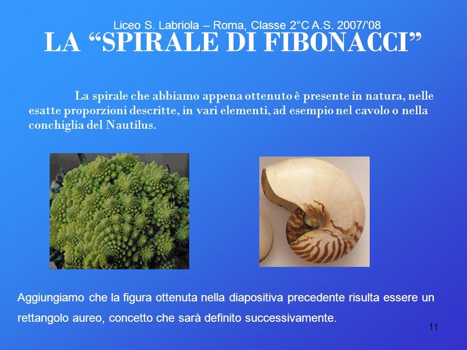 11 La spirale che abbiamo appena ottenuto è presente in natura, nelle esatte proporzioni descritte, in vari elementi, ad esempio nel cavolo o nella co