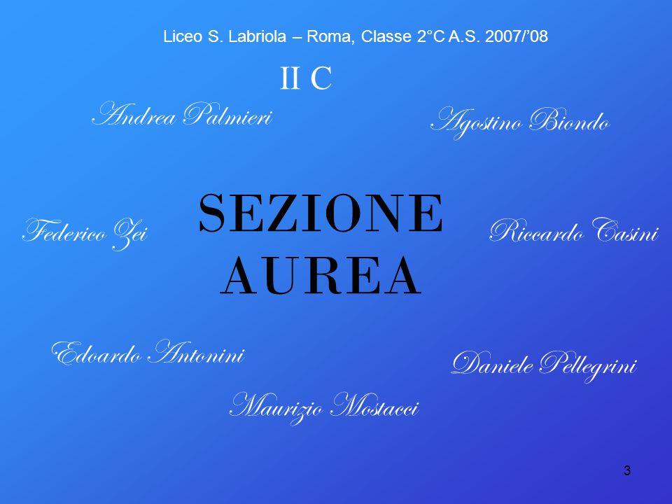 3 SEZIONE AUREA Agostino Biondo Andrea Palmieri Riccardo Casini Maurizio Mostacci Daniele Pellegrini Edoardo Antonini Federico Zei II C Liceo S. Labri