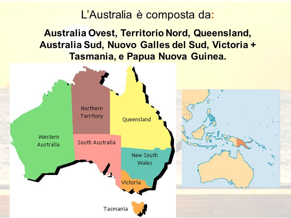 LAustralia è composta da: Australia Ovest, Territorio Nord, Queensland, Australia Sud, Nuovo Galles del Sud, Victoria + Tasmania, e Papua Nuova Guinea