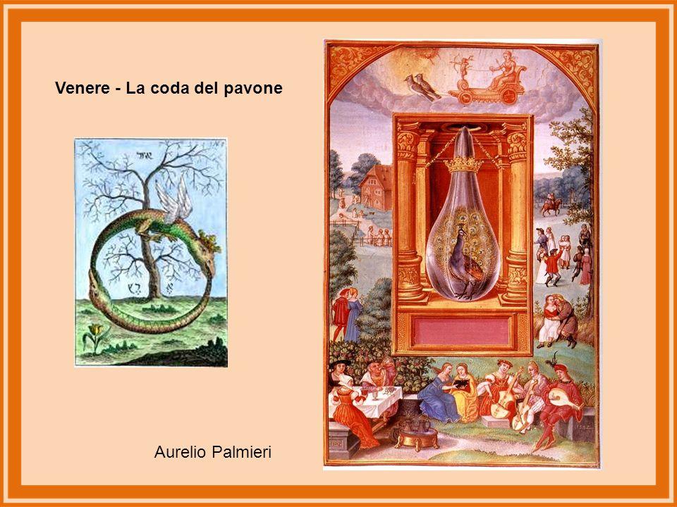 Sole - Drago a tre teste Aurelio Palmieri