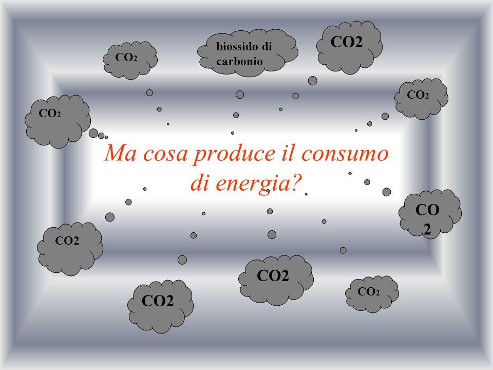 Ma cosa produce il consumo di energia? biossido di carbonio CO 2