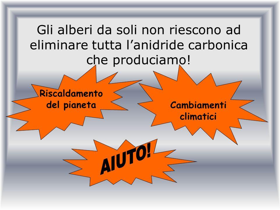 Gli alberi da soli non riescono ad eliminare tutta lanidride carbonica che produciamo! Riscaldamento del pianeta Cambiamenti climatici
