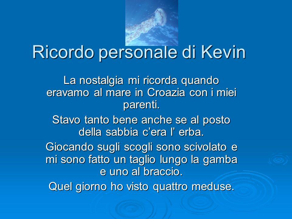 Ricordo personale di Kevin La nostalgia mi ricorda quando eravamo al mare in Croazia con i miei parenti. Stavo tanto bene anche se al posto della sabb