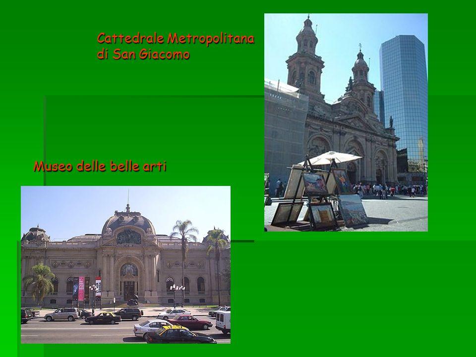 Cattedrale Metropolitana di San Giacomo Museo delle belle arti