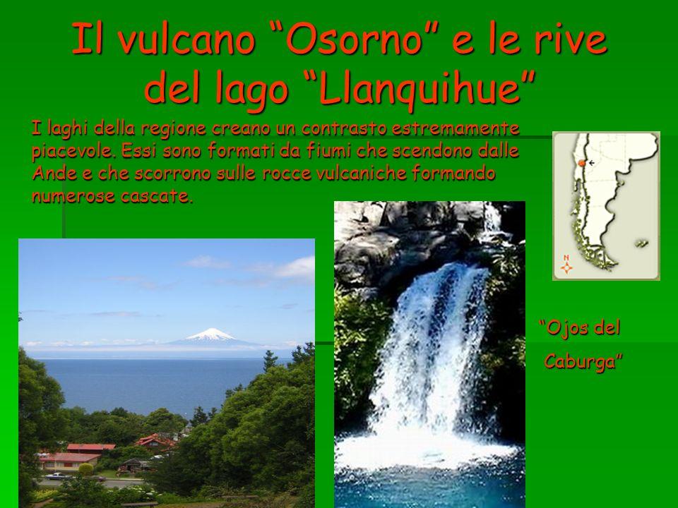 Il vulcano Osorno e le rive del lago Llanquihue I laghi della regione creano un contrasto estremamente piacevole. Essi sono formati da fiumi che scend