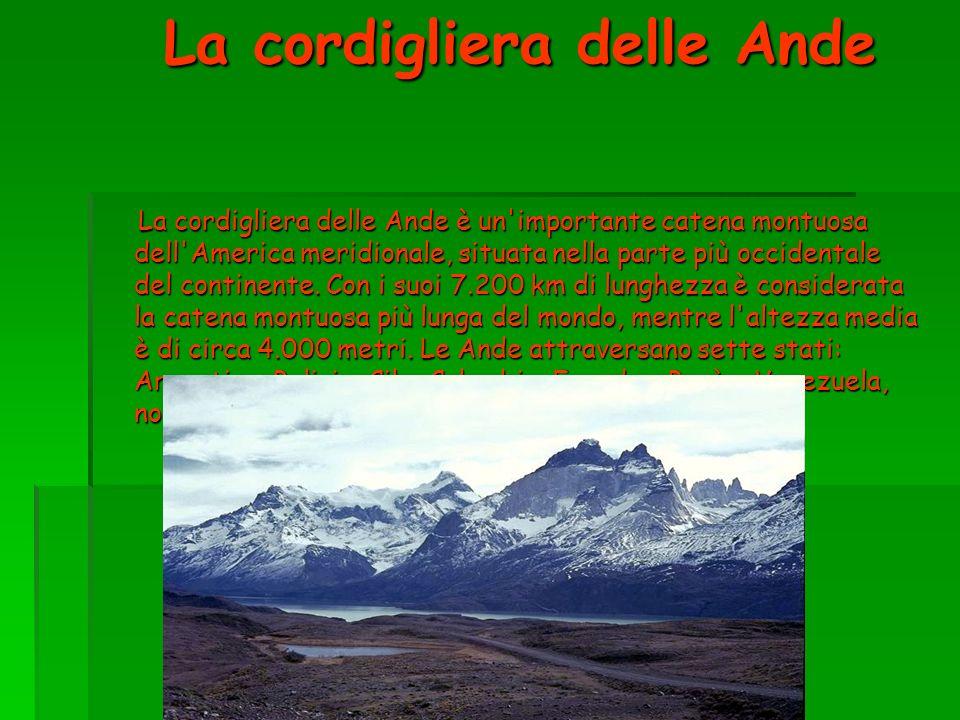 La cordigliera delle Ande La cordigliera delle Ande è un'importante catena montuosa dell'America meridionale, situata nella parte più occidentale del