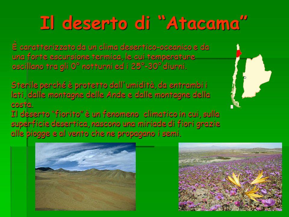 Il deserto di Atacama È caratterizzato da un clima desertico-oceanico e da una forte escursione termica, le cui temperature oscillano tra gli 0° nottu