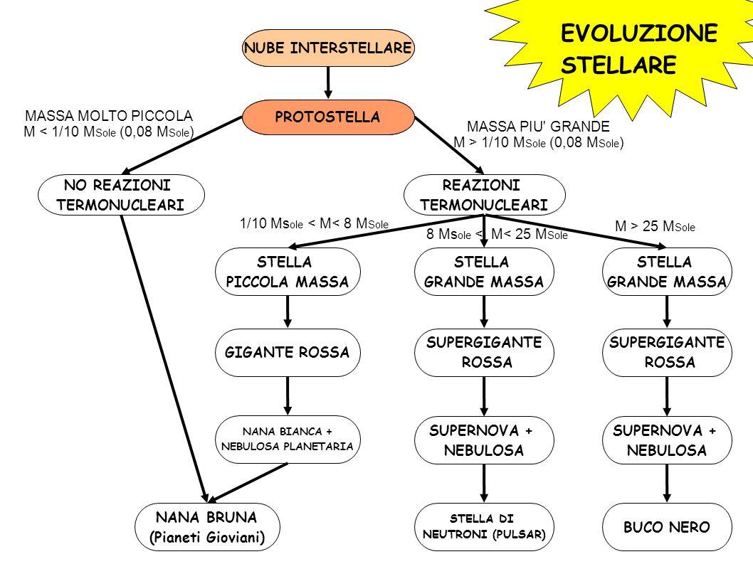 EVOLUZIONE STELLARE NUBE INTERSTELLARE PROTOSTELLA NO REAZIONI TERMONUCLEARI REAZIONI TERMONUCLEARI STELLA PICCOLA MASSA STELLA GRANDE MASSA STELLA GRANDE MASSA NANA BRUNA (Pianeti Gioviani) GIGANTE ROSSA NANA BIANCA + NEBULOSA PLANETARIA SUPERGIGANTE ROSSA SUPERGIGANTE ROSSA SUPERNOVA + NEBULOSA SUPERNOVA + NEBULOSA STELLA DI NEUTRONI (PULSAR) BUCO NERO MASSA MOLTO PICCOLA M < 1/10 M Sole (0,08 M Sole ) MASSA PIU GRANDE M > 1/10 M Sole (0,08 M Sole ) 1/10 Ms ole < M< 8 M Sole M > 25 M Sole 8 Ms ole < M< 25 M Sole NUBE INTERSTELLARE PROTOSTELLA