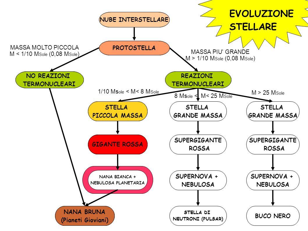 EVOLUZIONE STELLARE NUBE INTERSTELLARE PROTOSTELLA NO REAZIONI TERMONUCLEARI REAZIONI TERMONUCLEARI STELLA PICCOLA MASSA STELLA GRANDE MASSA STELLA GRANDE MASSA NANA BRUNA (Pianeti Gioviani) GIGANTE ROSSA NANA BIANCA + NEBULOSA PLANETARIA SUPERGIGANTE ROSSA SUPERGIGANTE ROSSA SUPERNOVA + NEBULOSA SUPERNOVA + NEBULOSA STELLA DI NEUTRONI (PULSAR) BUCO NERO MASSA MOLTO PICCOLA M < 1/10 M Sole (0,08 M Sole ) MASSA PIU GRANDE M > 1/10 M Sole (0,08 M Sole ) 1/10 Ms ole < M< 8 M Sole M > 25 M Sole 8 Ms ole < M< 25 M Sole NUBE INTERSTELLARE PROTOSTELLA NO REAZIONI TERMONUCLEARI NANA BRUNA (Pianeti Gioviani) REAZIONI TERMONUCLEARI STELLA PICCOLA MASSA GIGANTE ROSSA