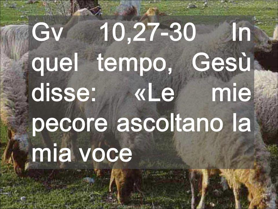 Gv 10,27-30 In quel tempo, Gesù disse: «Le mie pecore ascoltano la mia voce