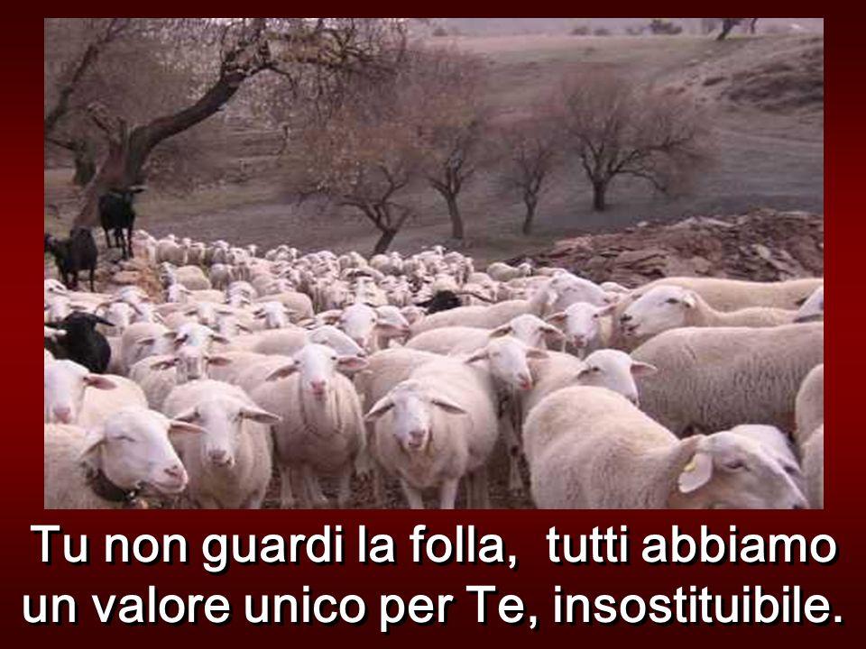Allora egli disse loro questa parabola: Chi di voi se ha cento pecore e ne perde una, non lascia le novantanove nel deserto e va dietro a quella perdu