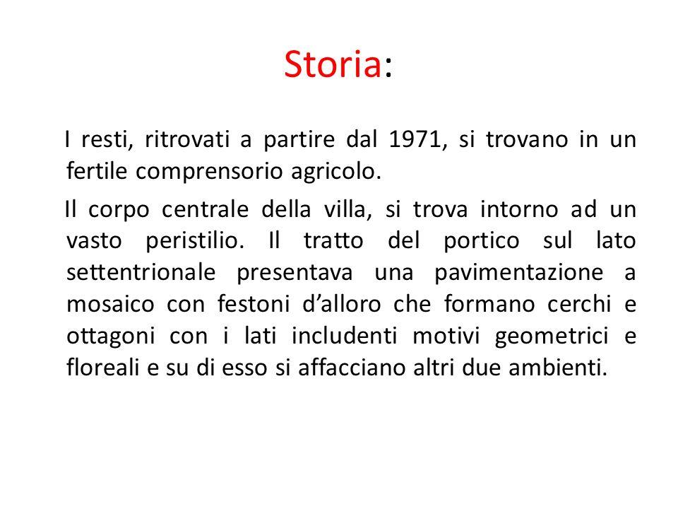Storia: I resti, ritrovati a partire dal 1971, si trovano in un fertile comprensorio agricolo.