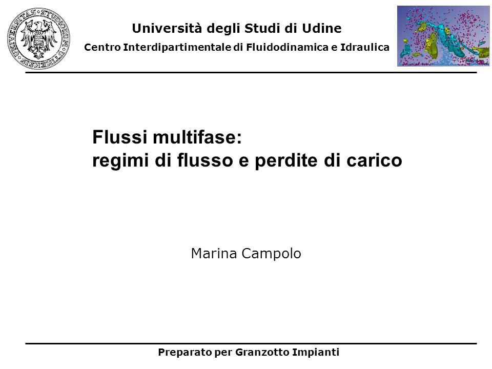 Flussi multifase: regimi di flusso e perdite di carico Università degli Studi di Udine Centro Interdipartimentale di Fluidodinamica e Idraulica Prepar
