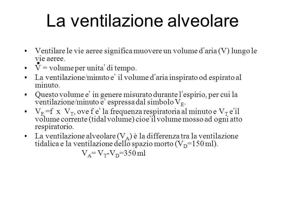 La ventilazione alveolare Ventilare le vie aeree significa muovere un volume d aria (V) lungo le vie aeree. V = volume per unita di tempo. La ventilaz