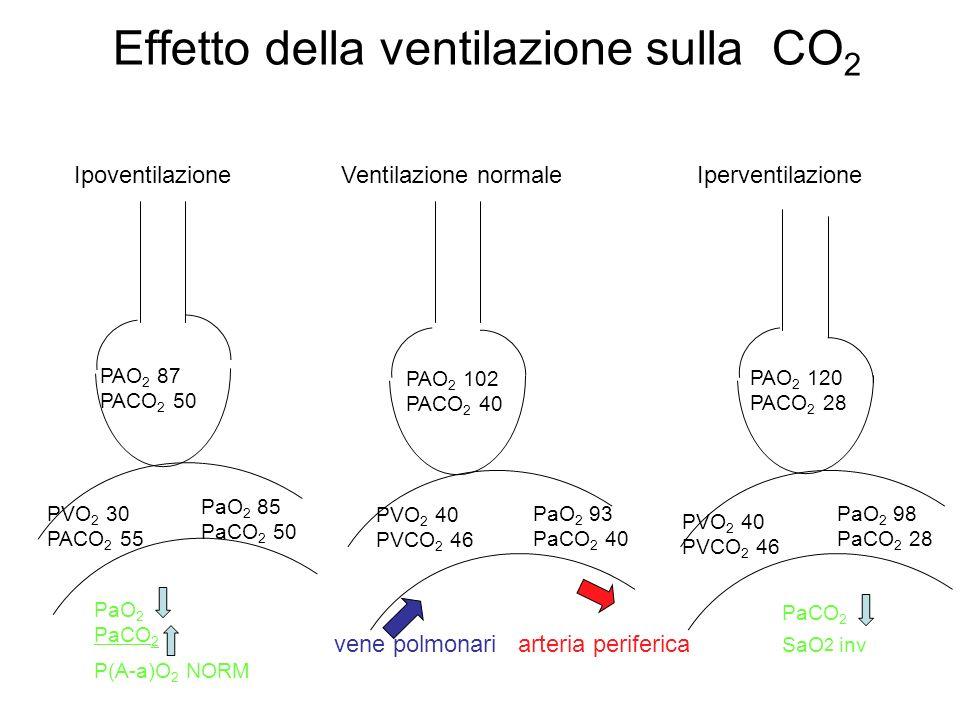 Effetto della ventilazione sulla CO 2 vene polmonari arteria periferica Ipoventilazione Ventilazione normale Iperventilazione PAO 2 102 PACO 2 40 PAO