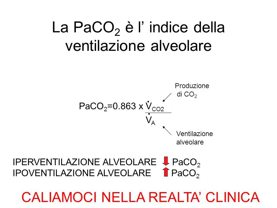 La PaCO 2 è l indice della ventilazione alveolare PaCO 2 =0.863 x V CO2.. Produzione di CO 2 Ventilazione alveolare IPERVENTILAZIONE ALVEOLARE PaCO 2