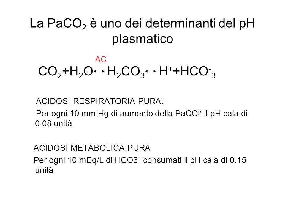 La PaCO 2 è uno dei determinanti del pH plasmatico CO 2 +H 2 O H 2 CO 3 H + +HCO - 3 ACIDOSI RESPIRATORIA PURA: Per ogni 10 mm Hg di aumento della PaC