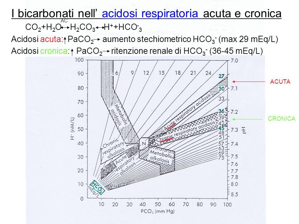 I bicarbonati nell acidosi respiratoria acuta e cronica CO 2 +H 2 O H 2 CO 3 H + +HCO - 3 Acidosi acuta: PaCO 2 aumento stechiometrico HCO 3 - (max 29