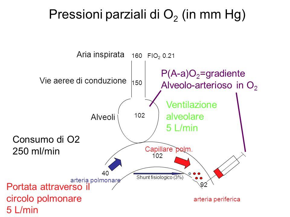 Pressioni parziali di O 2 (in mm Hg) Shunt fisiologico (3%) 160 FIO 2 0.21 150 102 40 arteria periferica arteria polmonare Capillare polm. Consumo di
