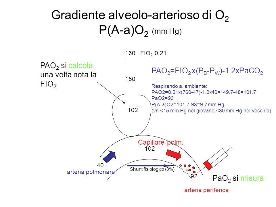 Gradiente alveolo-arterioso di O 2 P(A-a)O 2 (mm Hg) Shunt fisiologico (3%) 160 FIO 2 0.21 150 102 40 arteria periferica arteria polmonare Capillare p
