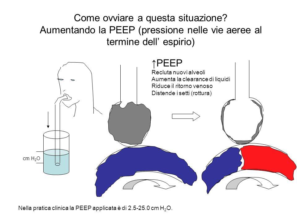 Come ovviare a questa situazione? Aumentando la PEEP (pressione nelle vie aeree al termine dell espirio) PEEP Recluta nuovi alveoli Aumenta la clearan