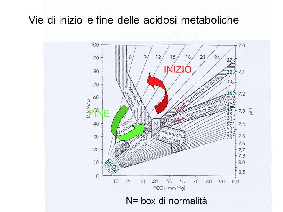 Vie di inizio e fine delle acidosi metaboliche INIZIO FINE N= box di normalità