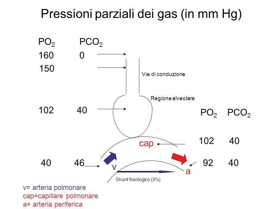 Pressioni parziali dei gas (in mm Hg) Shunt fisiologico (3%) PO 2 PCO 2 160 0 150 102 40 40 46 PO 2 PCO 2 a v v= arteria polmonare cap=capillare polmo