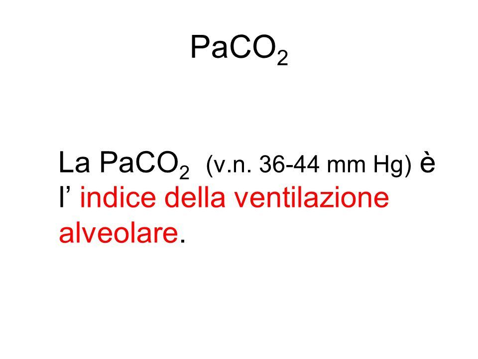 PaCO 2 La PaCO 2 (v.n. 36-44 mm Hg) è l indice della ventilazione alveolare.