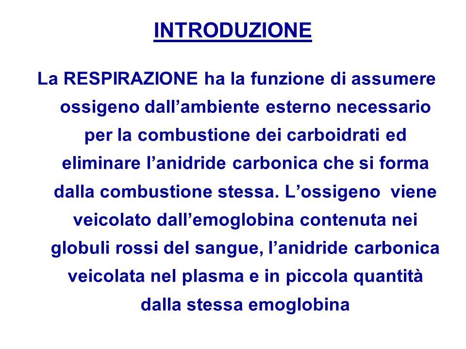 INTRODUZIONE La RESPIRAZIONE ha la funzione di assumere ossigeno dallambiente esterno necessario per la combustione dei carboidrati ed eliminare lanid