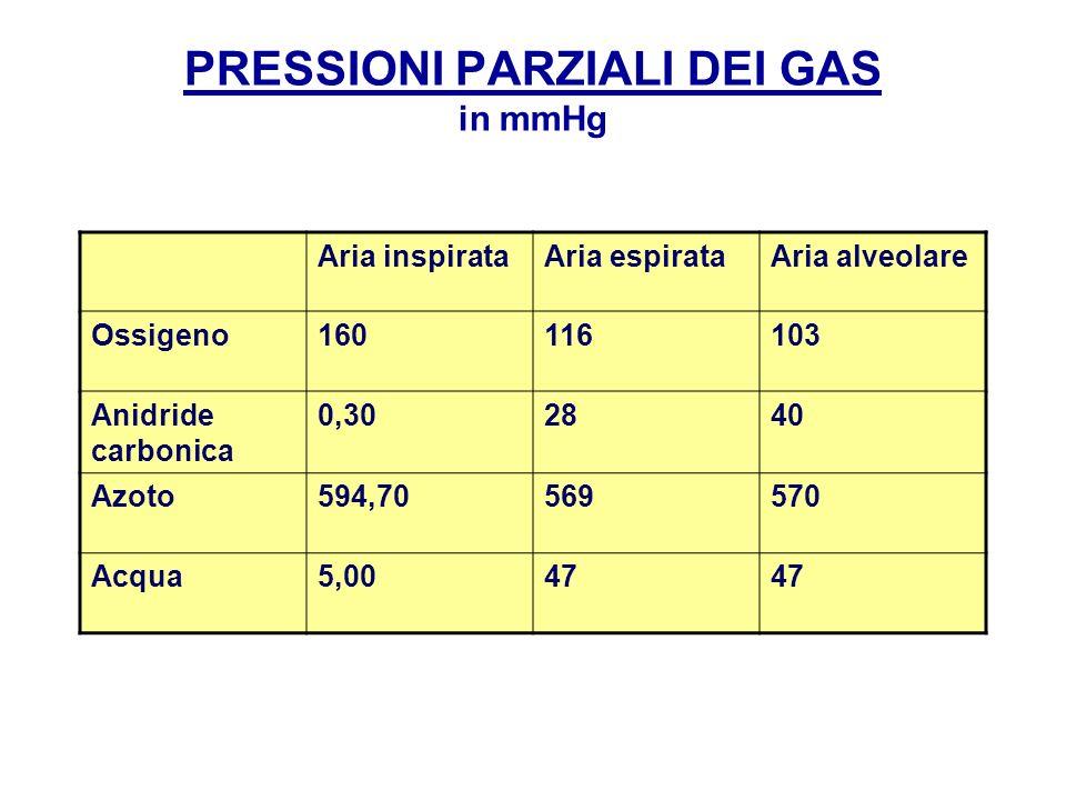 PRESSIONI PARZIALI DEI GAS in mmHg Aria inspirataAria espirataAria alveolare Ossigeno160116103 Anidride carbonica 0,302840 Azoto594,70569570 Acqua5,00