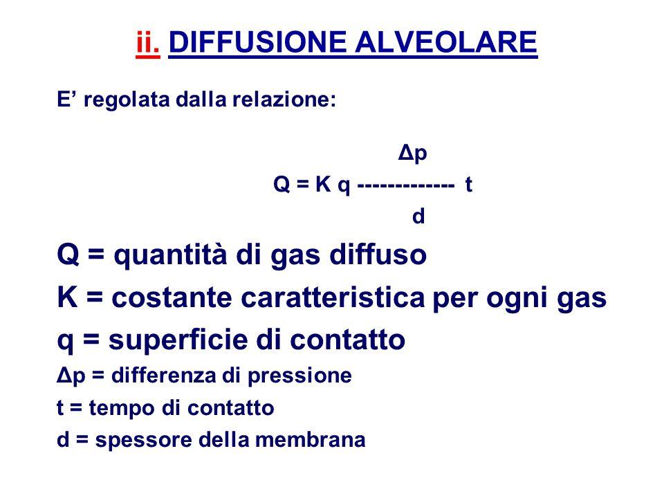 ii. DIFFUSIONE ALVEOLARE E regolata dalla relazione: Δp Q = K q ------------- t d Q = quantità di gas diffuso K = costante caratteristica per ogni gas