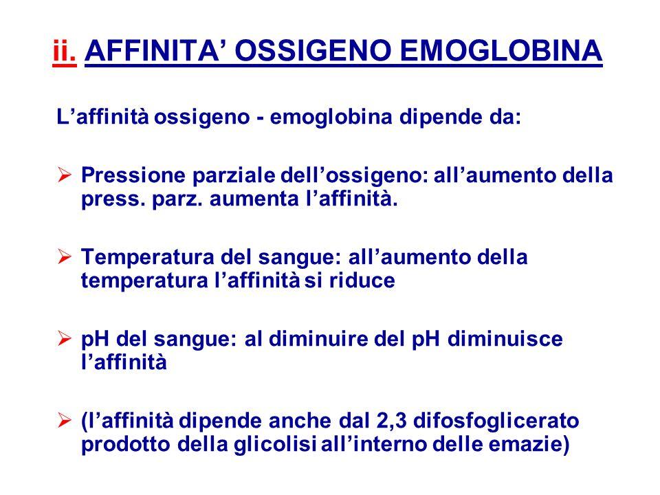ii. AFFINITA OSSIGENO EMOGLOBINA Laffinità ossigeno - emoglobina dipende da: Pressione parziale dellossigeno: allaumento della press. parz. aumenta la