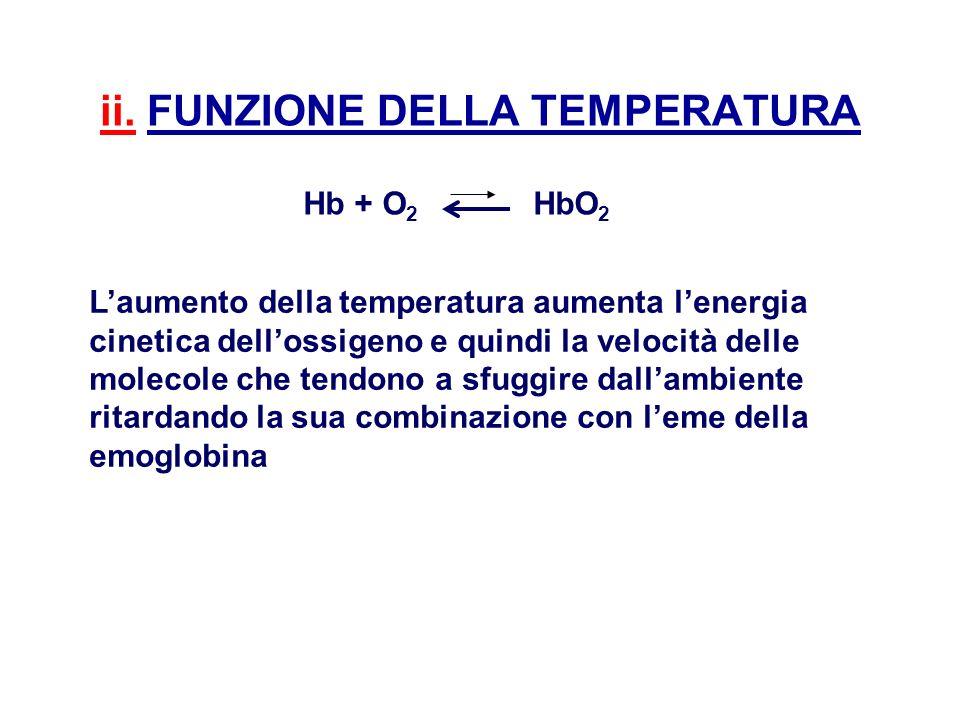 ii. FUNZIONE DELLA TEMPERATURA Hb + O 2 HbO 2 Laumento della temperatura aumenta lenergia cinetica dellossigeno e quindi la velocità delle molecole ch