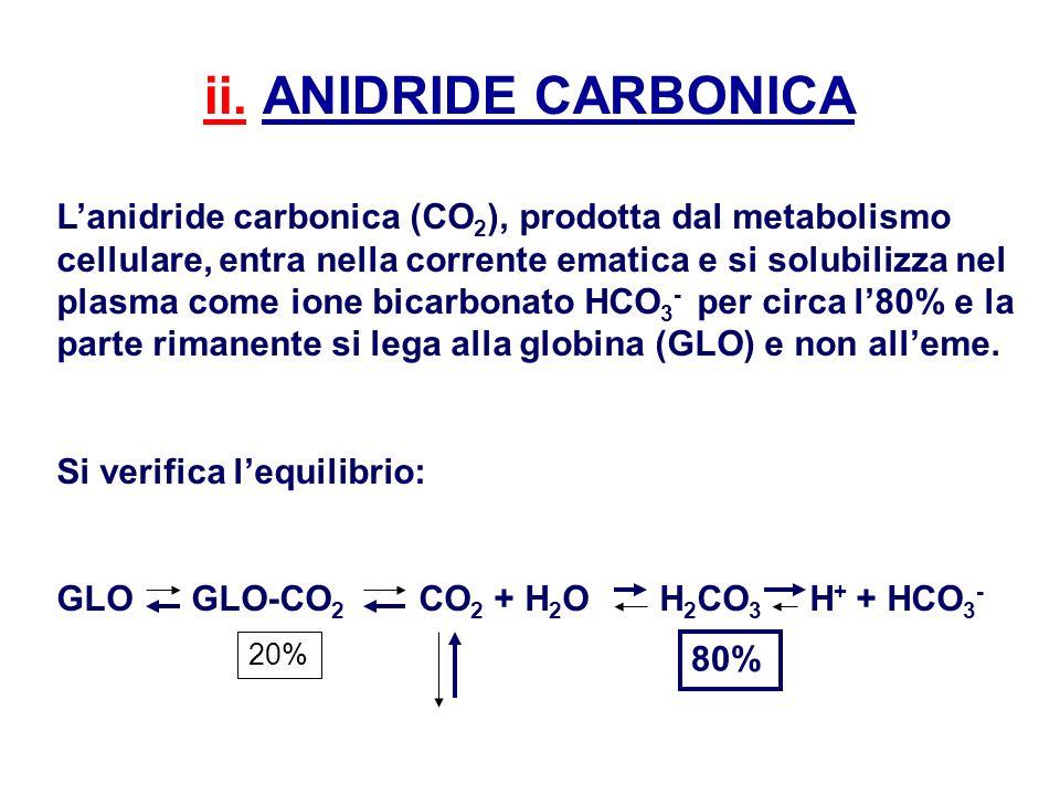 ii. ANIDRIDE CARBONICA Lanidride carbonica (CO 2 ), prodotta dal metabolismo cellulare, entra nella corrente ematica e si solubilizza nel plasma come
