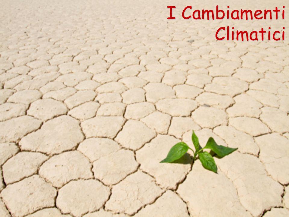 I Cambiamenti Climatici