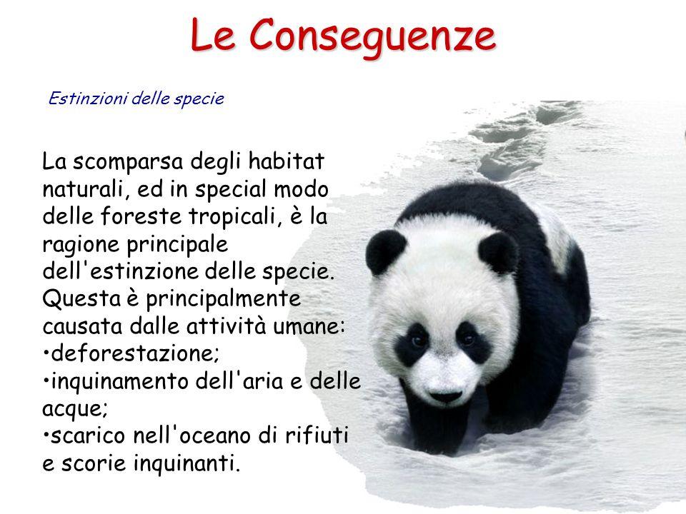 Le Conseguenze Estinzioni delle specie La scomparsa degli habitat naturali, ed in special modo delle foreste tropicali, è la ragione principale dell'e