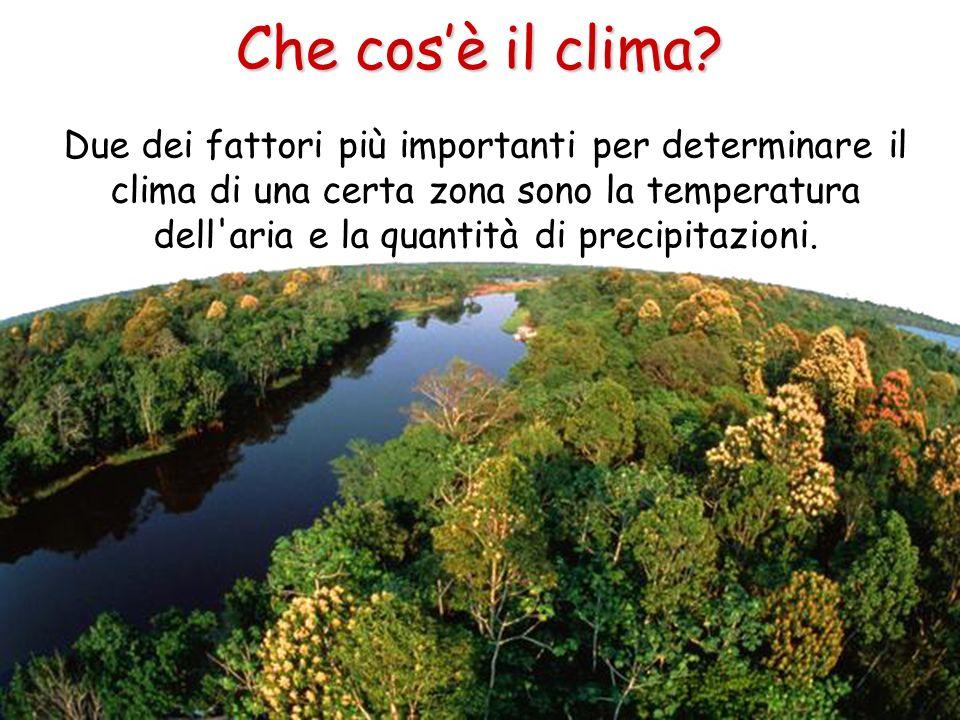 Che cosè il clima? Due dei fattori più importanti per determinare il clima di una certa zona sono la temperatura dell'aria e la quantità di precipitaz