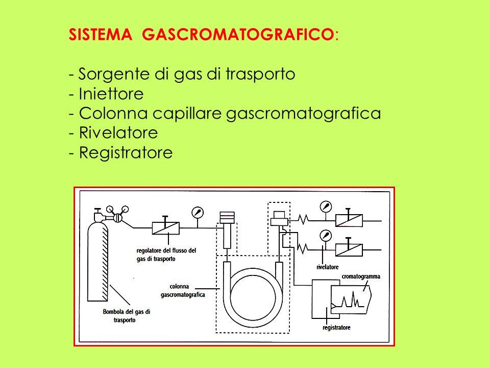 SISTEMA GASCROMATOGRAFICO : - Sorgente di gas di trasporto - Iniettore - Colonna capillare gascromatografica - Rivelatore - Registratore