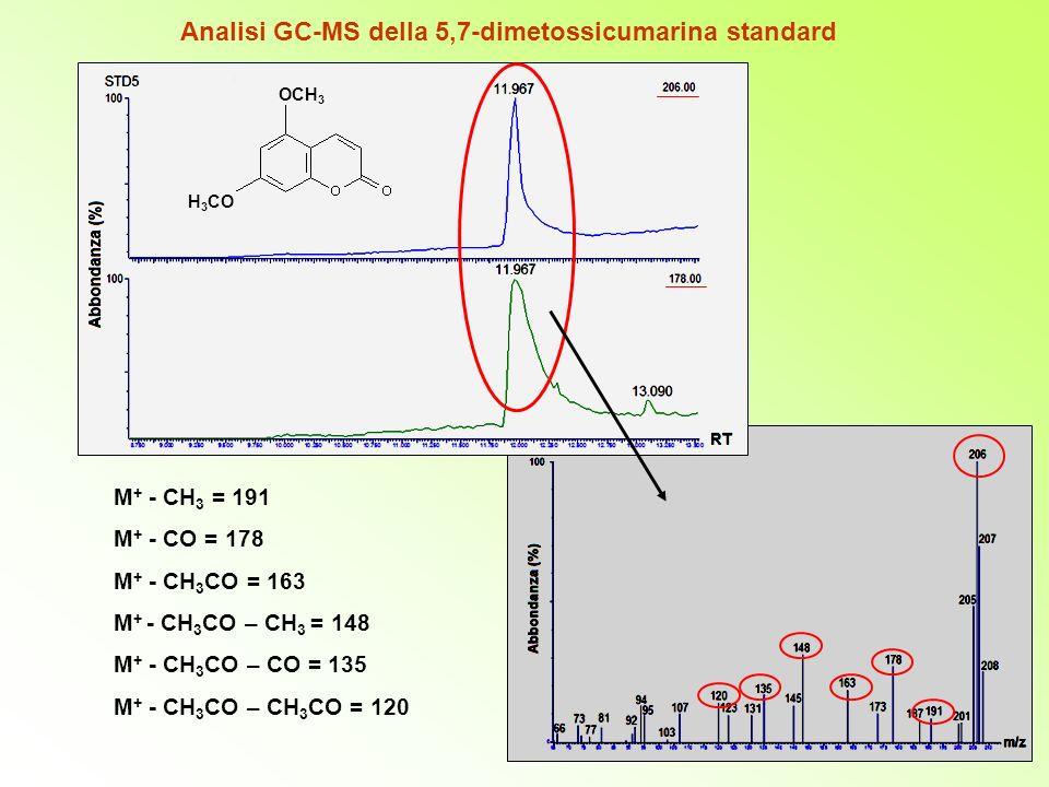Analisi GC-MS della 5,7-dimetossicumarina standard M + - CH 3 = 191 M + - CO = 178 M + - CH 3 CO = 163 M + - CH 3 CO – CH 3 = 148 M + - CH 3 CO – CO = 135 M + - CH 3 CO – CH 3 CO = 120 OCH 3 H 3 CO