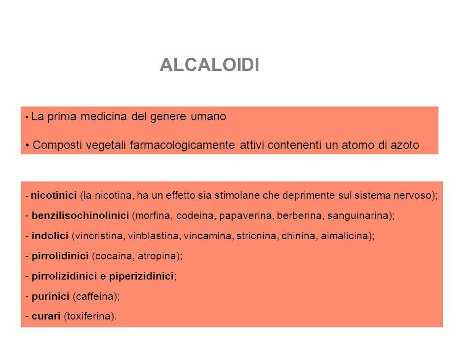 ALCALOIDI La prima medicina del genere umano Composti vegetali farmacologicamente attivi contenenti un atomo di azoto - nicotinici (la nicotina, ha un effetto sia stimolane che deprimente sul sistema nervoso); - benzilisochinolinici (morfina, codeina, papaverina, berberina, sanguinarina); - indolici (vincristina, vinblastina, vincamina, stricnina, chinina, aimalicina); - pirrolidinici (cocaina, atropina); - pirrolizidinici e piperizidinici; - purinici (caffeina); - curari (toxiferina).