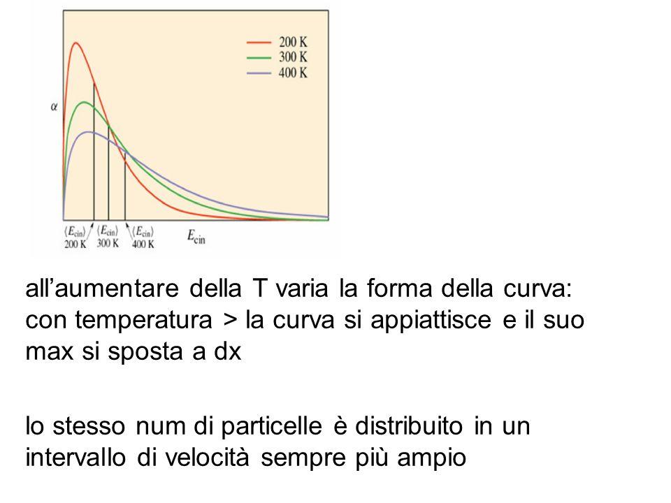 allaumentare della T varia la forma della curva: con temperatura > la curva si appiattisce e il suo max si sposta a dx lo stesso num di particelle è d