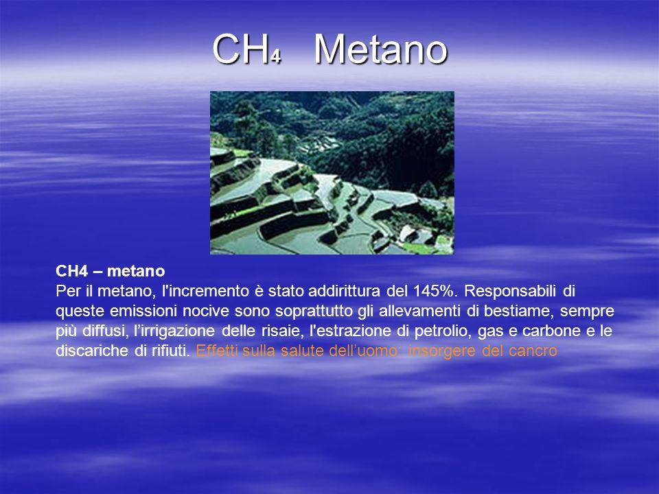CH4 – metano Per il metano, l'incremento è stato addirittura del 145%. Responsabili di queste emissioni nocive sono soprattutto gli allevamenti di bes