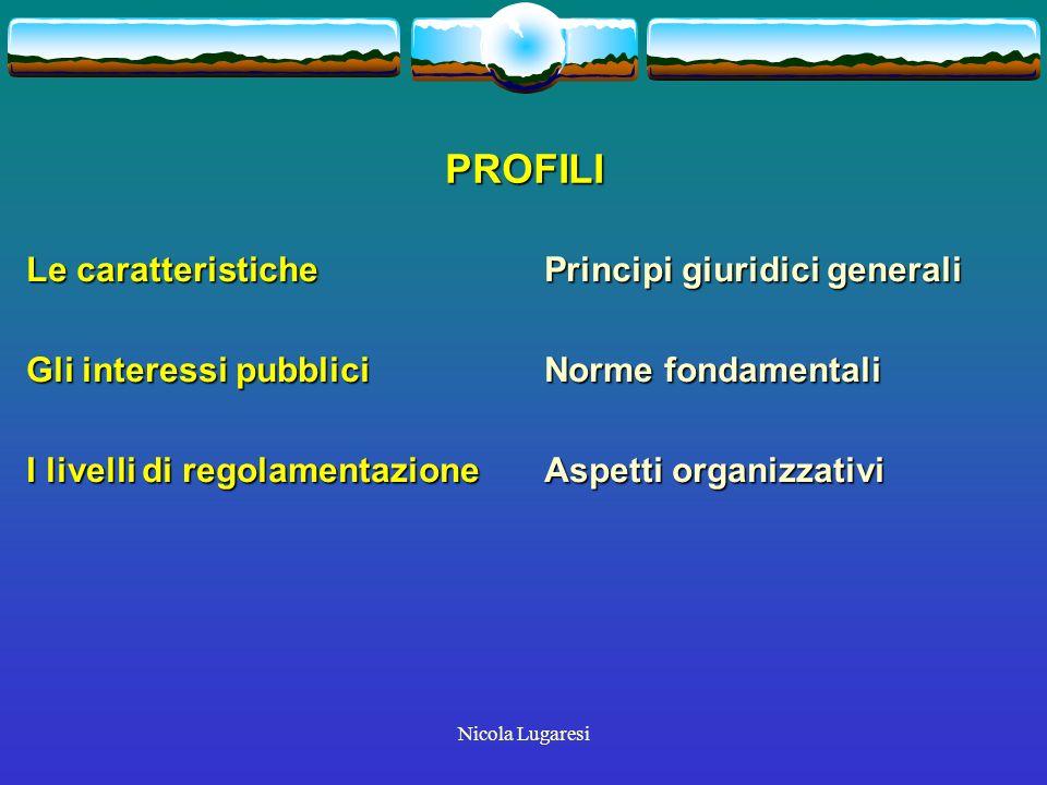 Nicola Lugaresi PROFILI Le caratteristiche Gli interessi pubblici I livelli di regolamentazione Principi giuridici generali Norme fondamentali Aspetti organizzativi