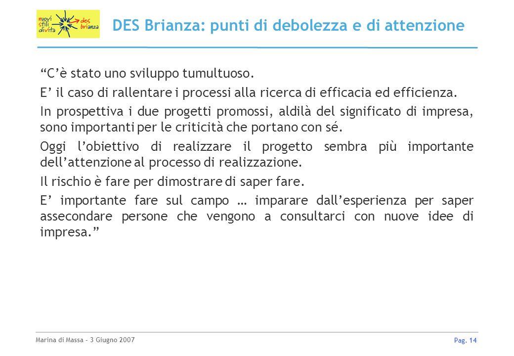 Marina di Massa – 3 Giugno 2007 Pag. 14 DES Brianza: punti di debolezza e di attenzione Cè stato uno sviluppo tumultuoso. E il caso di rallentare i pr
