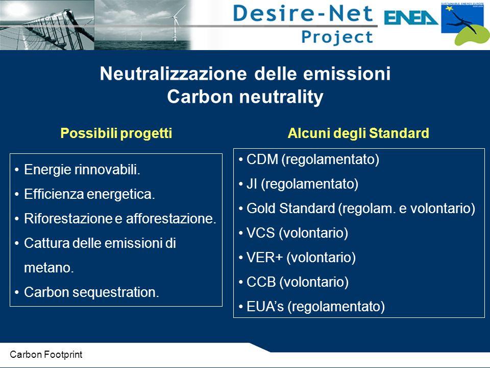 Energie rinnovabili. Efficienza energetica. Riforestazione e afforestazione. Cattura delle emissioni di metano. Carbon sequestration. Possibili proget