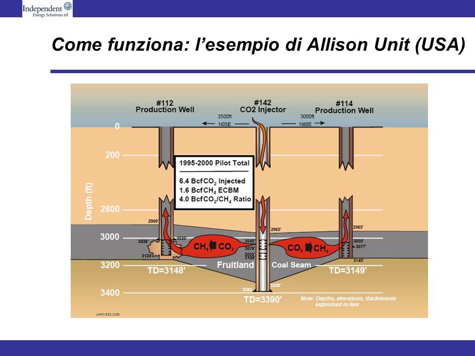 Come funziona: lesempio di Allison Unit (USA)