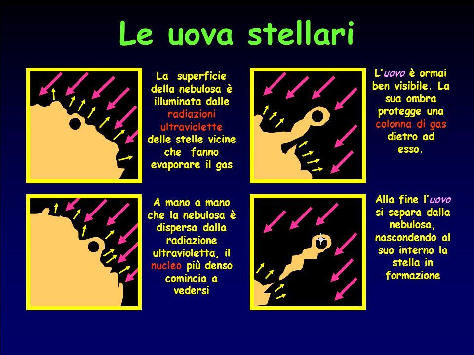 Le uova stellari La superficie della nebulosa è illuminata dalle radiazioni ultraviolette delle stelle vicine che fanno evaporare il gas A mano a mano
